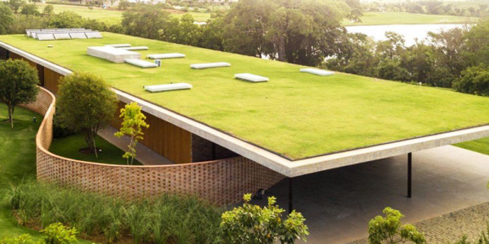 Création d'espaces verts : comment planter une végétation sur son toit