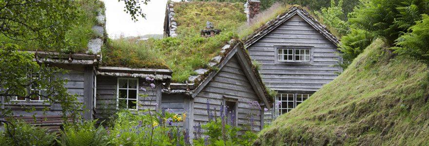 Offrez-vous une toiture végétalisée